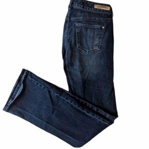 Express Stella Boot Regular Low Rise Jeans - 2R
